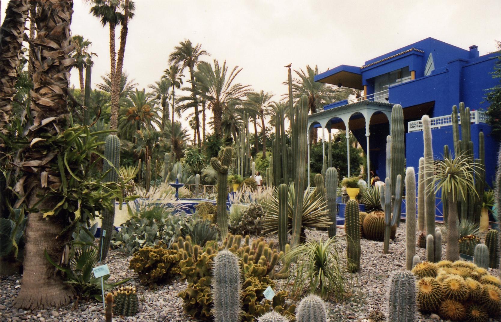 marjorelle gardens - Majorelle Garden